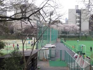 20130325_ut_tennis